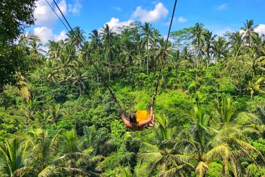 Visiting Bali Swing Ubud - Buy the Plane Ticket