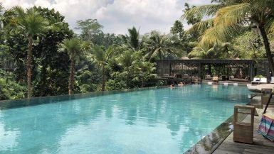 Jungle Fish Bar Pool Food Drinks Travel Ubud Bali Indonesia